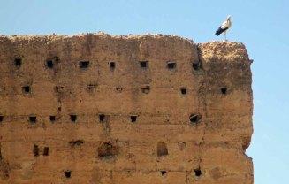 marrakech03_for web