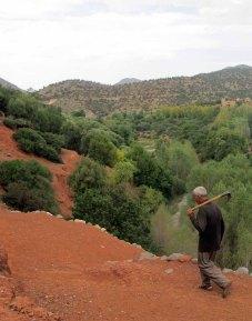 marrakech16_for web