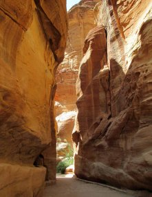 petra 24_for web