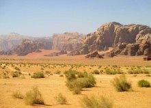 wadi 22_for web