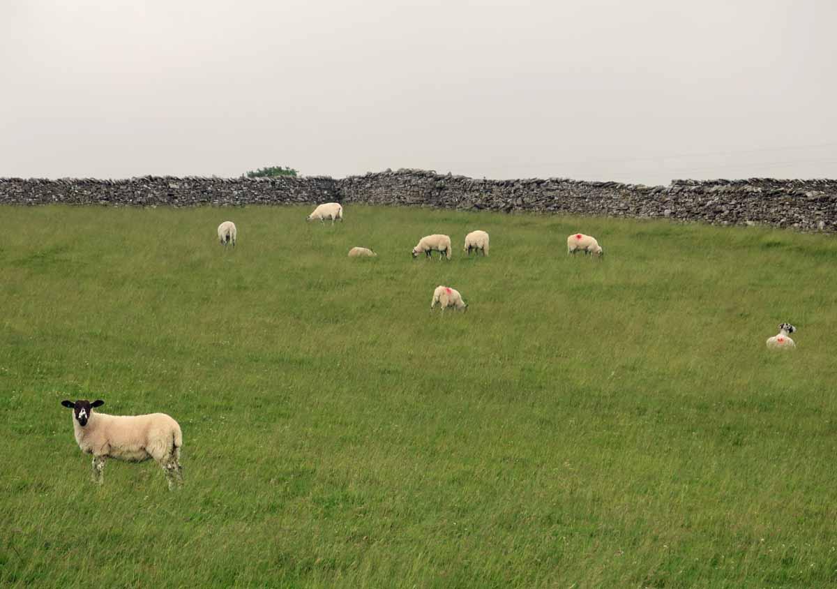 Cumbria01