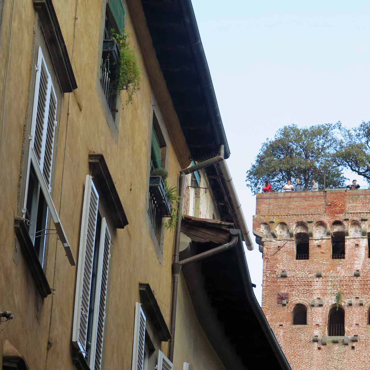 lucca03
