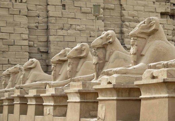 egypt 110