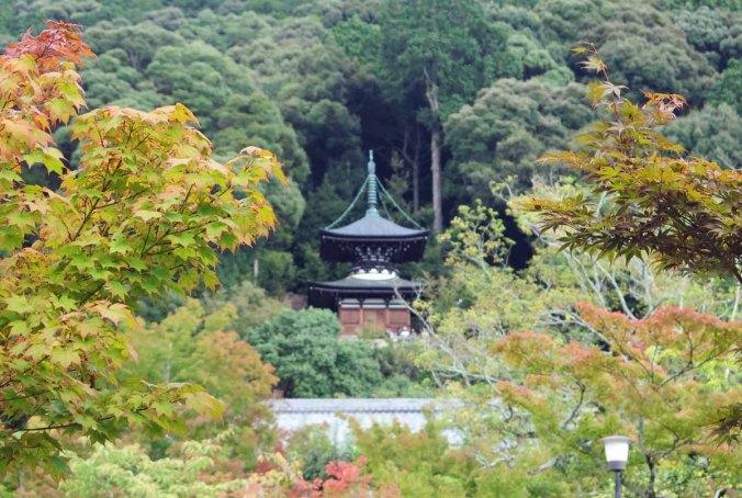 kyoto 036