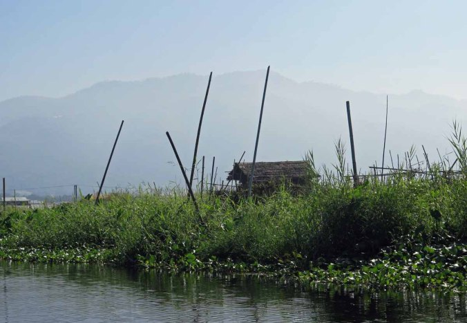 inle 008
