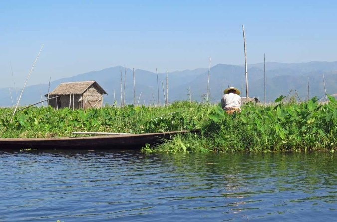 inle 017