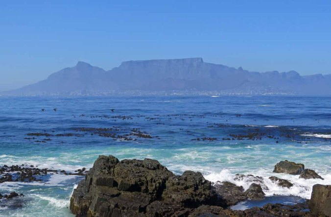 south africa 39